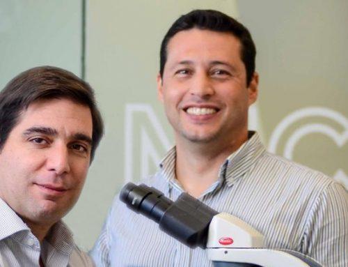 Vacina portuguesa com resultados promissores nos ensaios pré-clínicos