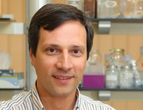 Futuro pós-vacinação entre reforço da dose e o controlo de variantes